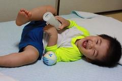 寝転がって爆笑とらちゃん (2012/7/22)