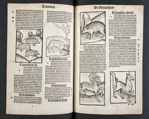 Annotated woodcut illustrations in Hortus sanitatis