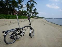 H6R Black Beach Beauty