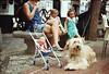 Cuteness from Madrid.  #Madrid #Spain #España #instamadrid #instaespaña #instaspain #madridgram #streetphotography #dog #lovedogs #fluffy #girls #infants #instagood #picoftheday #photooftheday #filmphotography #istillshootfilm #filmisnotdead #analog #anal
