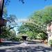 Audubon Place