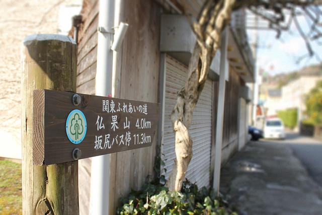 仏果山_09