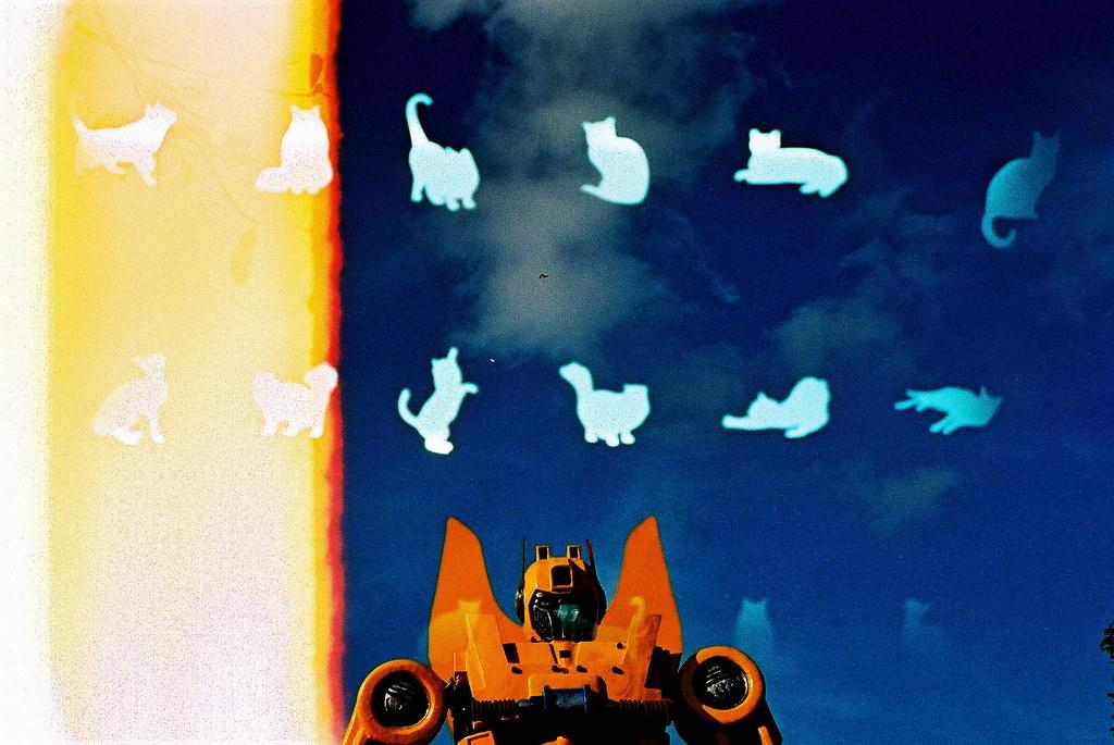 transformer: CAT Form:  Film swap( 貓的圖案是對方拍攝, 我拍攝的是機械人,剛好很妙的重曝出現這樣的畫面)