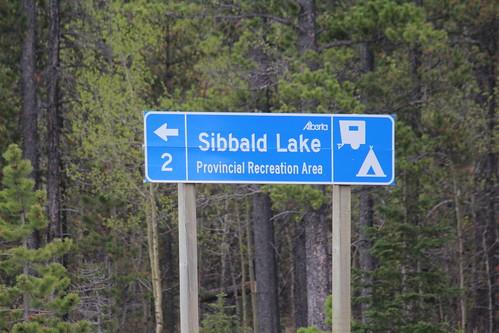 Sibbald Lake 305