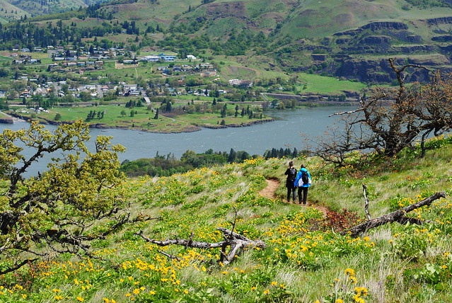 Tom McCall Preserve - Eastern Columbia River Gorge