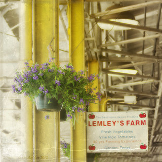Lemley's Farm ~ Canton, Texas