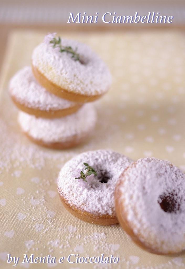 Ricetta Donuts Con Piastra Elettrica.Menta E Cioccolato Donuts O Mini Ciambelline Gluten Free Perche Anche Homer Potrebbe Essere Celiaco