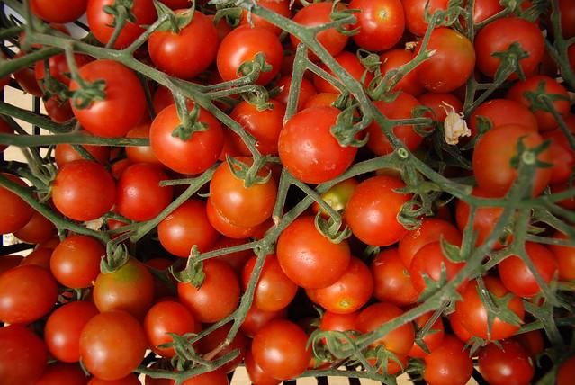 Organic Farming in Cyprus - Flickr CC George Groutas