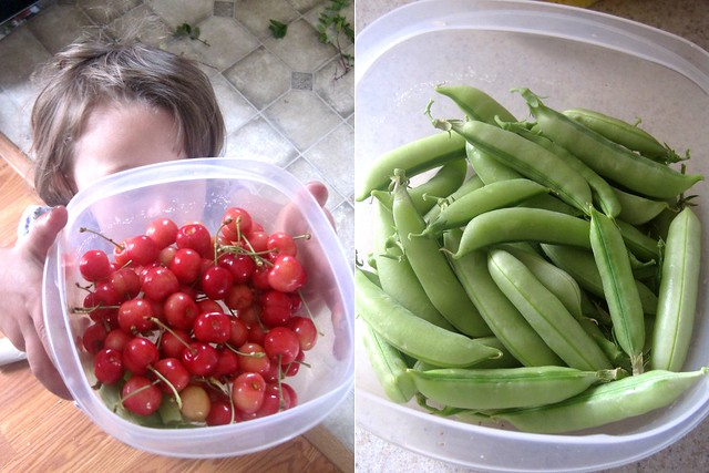 bing cherries, snap peas