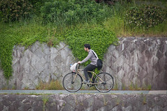 Someone cycling in Kyoto
