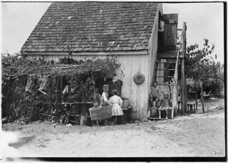Three families is the rule in these shacks, one room above and one below, but sometimes four families crowd in. Out door dining room at side. Maryland, June 1909