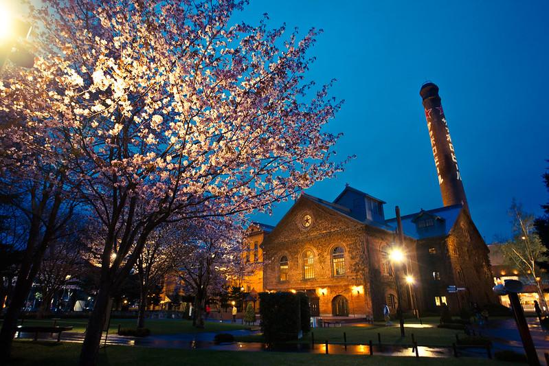 高聳的煙囪是札幌啤酒博物館的地標