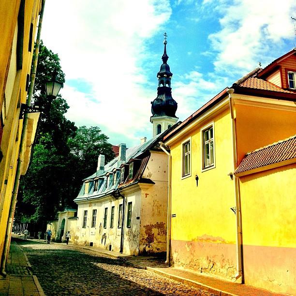 愛沙尼亞  塔林