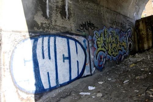 IMGP5203rd