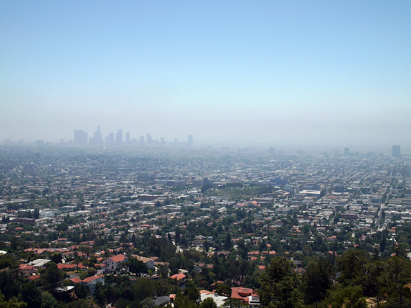 View from the Griffith Park