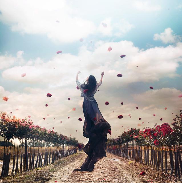 .bella. - dancing with death..