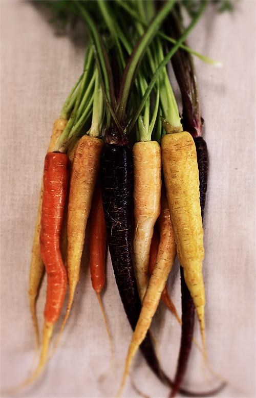 Carrots #1