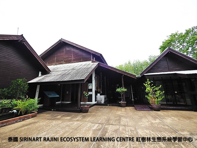 泰國 SIRINART RAJINI ECOSYSTEM LEARNING CENTRE 紅樹林生態系統學習中心 47