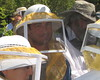 2012 Spring Field Day for Albuquerque Beekeepers