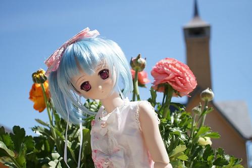 Nabana no Sato (Spring)