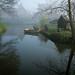 Morning Mist in Amsterdam by edwademd