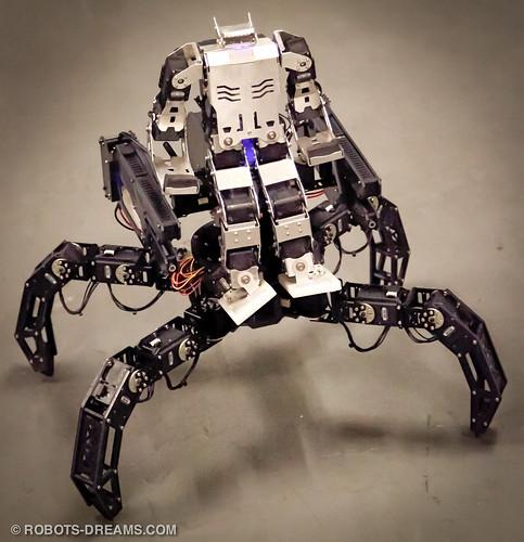 120420 RoboGames 2012-4 by Robots-Dreams