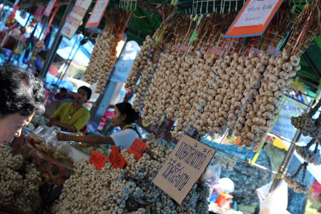 Mounds of garlic!