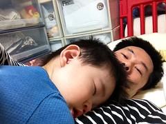 お腹の上で寝ます(2012/5/13)