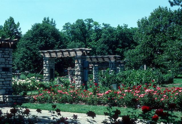 Rose Garden Loose Park Kansas City Mo 1986 Flickr