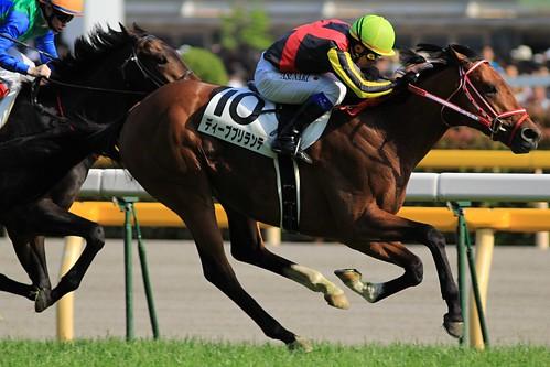 日本ダービー勝ち馬 ディープブリランテ(岩田康誠)3