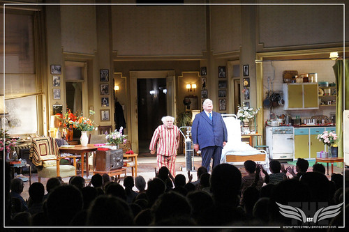 The Establishing Shot: The Sunshine Boys at The Savoy Theater - Danny DeVito and Richard Griffiths by Craig Grobler