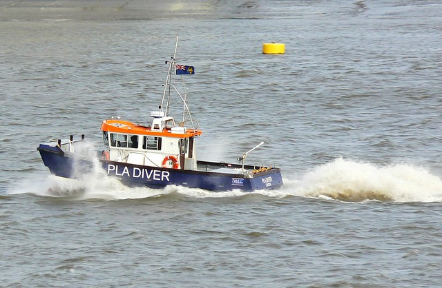 PLA Diver  @ Gallions Reach 02-06-12