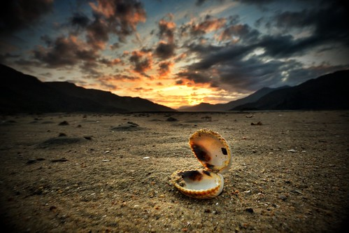 Sunset Shell - Scottish Highlands  by Michael~Ashley