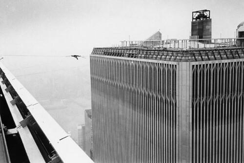 WTC_PetitBird2