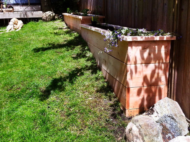 Daycare garden - after - #2