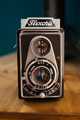 Lipca Flexora I Image By Stephane Venne Image Rights