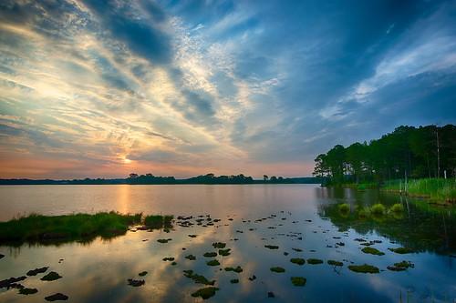 summer nature sunrise landscape outdoors landscapes nikon outdoor maryland d800 blackwaternwr borderfx afsnikkor1635mmf4gedvr photocontesttnc12