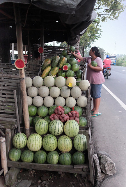 Beautiful Melons for sale