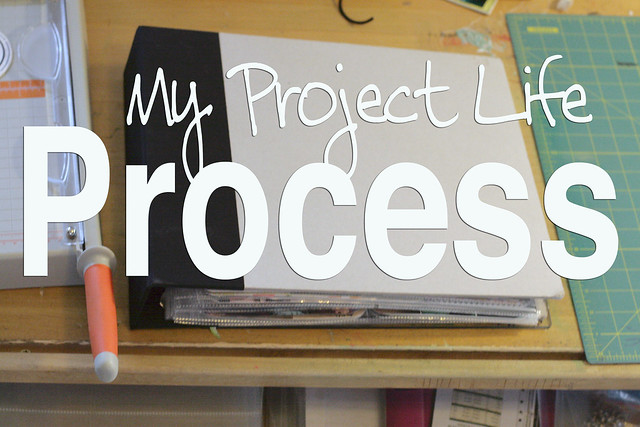My Project Life Process