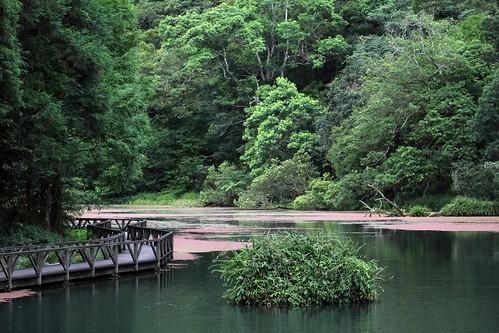 福山植物園0019