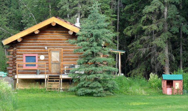 real log cabin + toy log cabin house