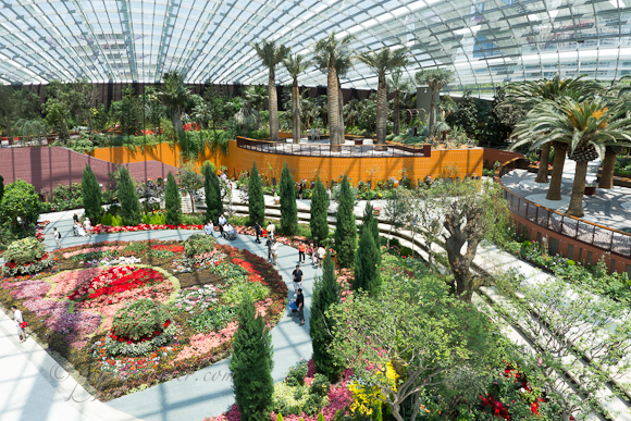 source filebaobab and bottle tree garden flower dome gardens by the bay - Garden By The Bay Eateries