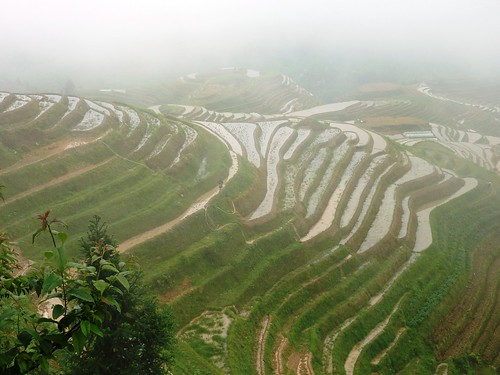 C-Guangxi-Pingan-Terrasse des 7 etoiles (32)