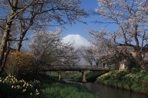 Mt. Fuji at Oshino Village at 6:41 am (IMG_8672_DPP)