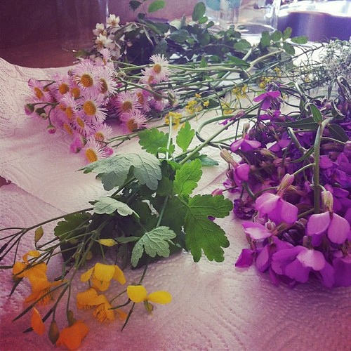 Making wildflower bouquets