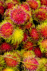 plant(0.0), food(0.0), chrysanths(0.0), petal(0.0), rambutan(1.0), flower(1.0), flora(1.0), produce(1.0), fruit(1.0),