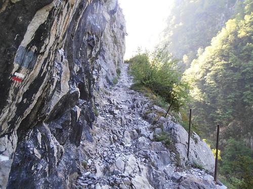 LA MATURE (chemin) 057