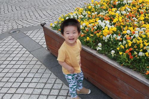 お花たくさんではしゃぐとらちゃん(2012/5/27)
