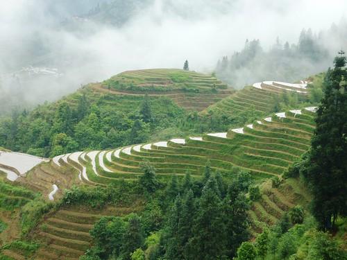 C-Guangxi-Pingan-Terrasse des 7 etoiles (66)