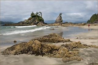 Brady's Beach Rocks